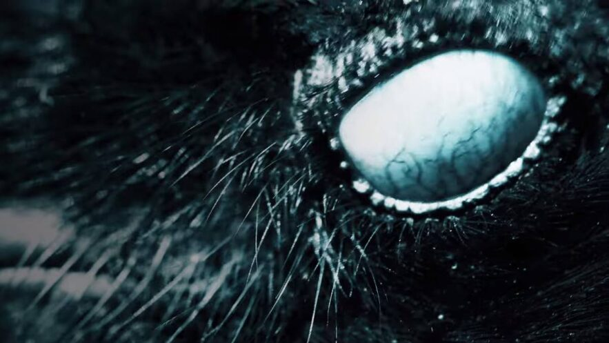 Mylène Farmer - Nevermore - Capture YouTube